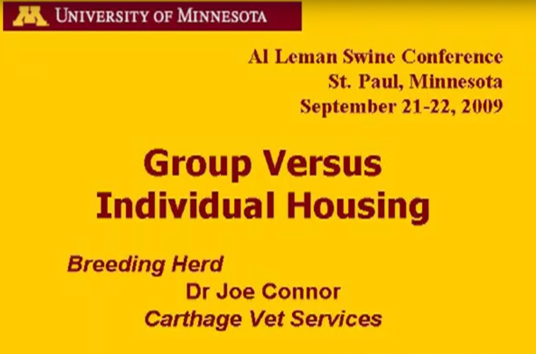 Group Versus Individual Sow Housing with Dr. Joe Connor