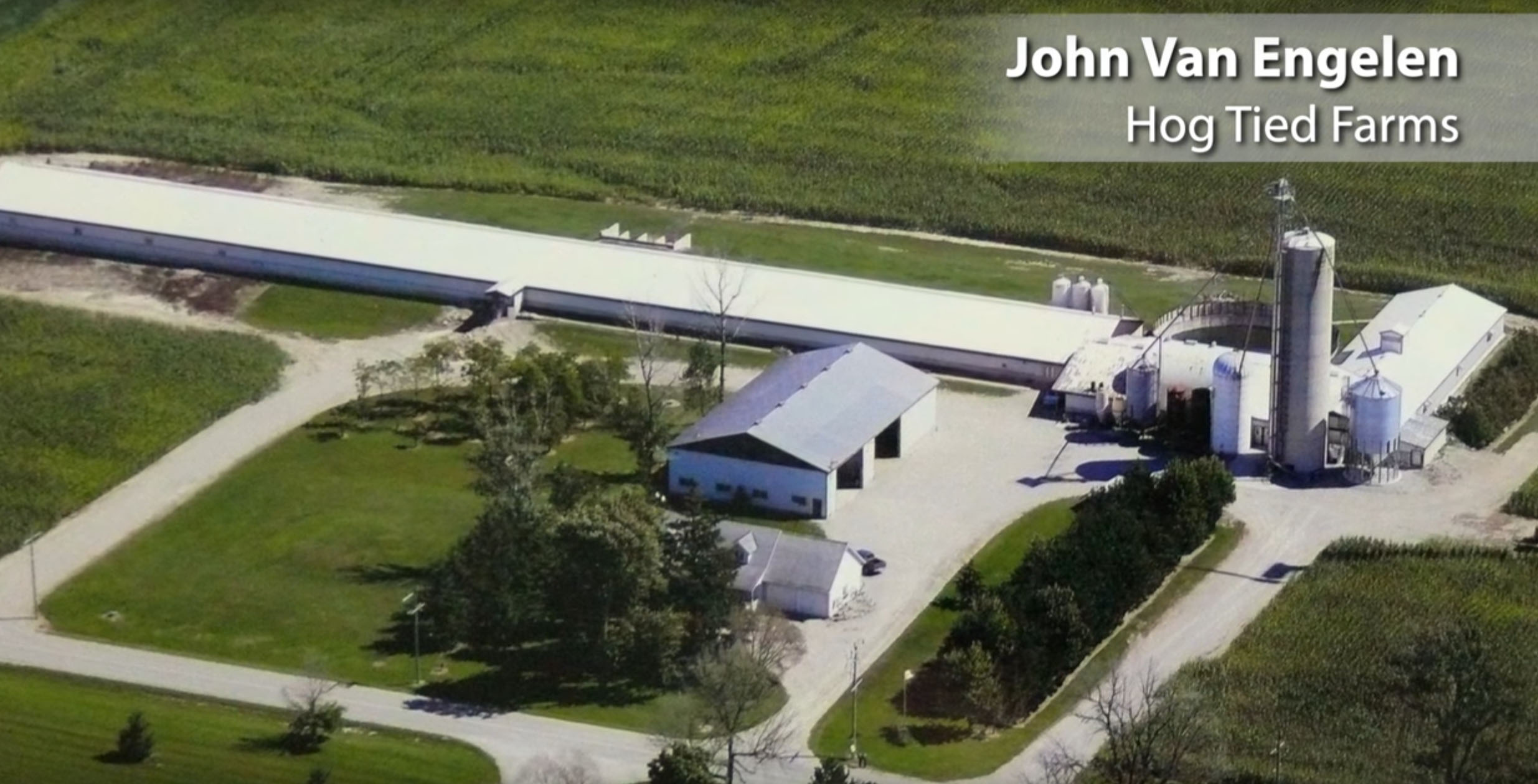 Group Sow Housing, John Van Engelen, Hog Tied Farms, Ontario, Canada